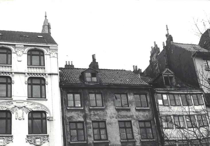 Neustadt50-2