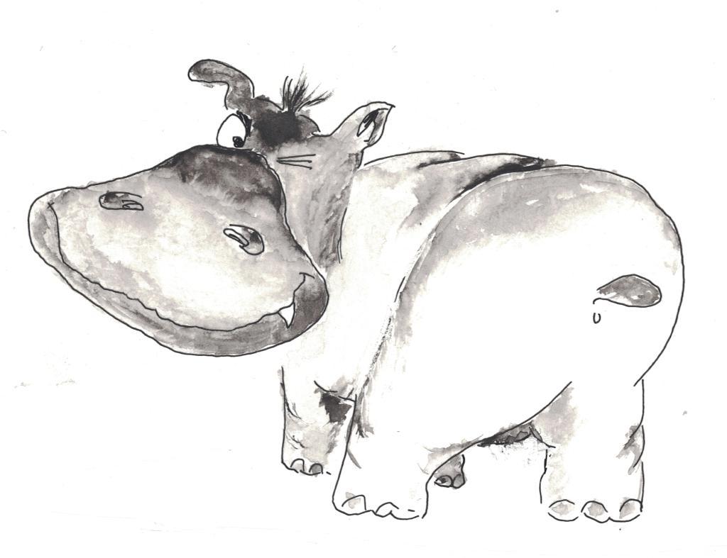 Nilpferd1