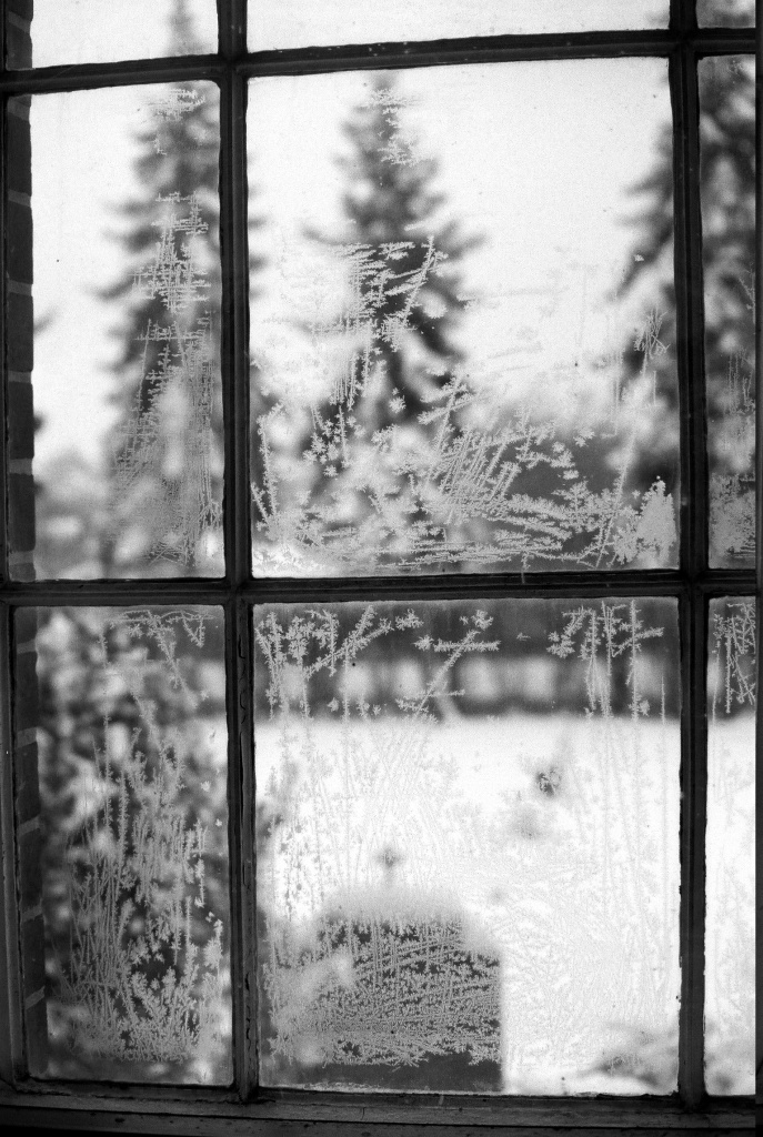 Eisfenster5409_021