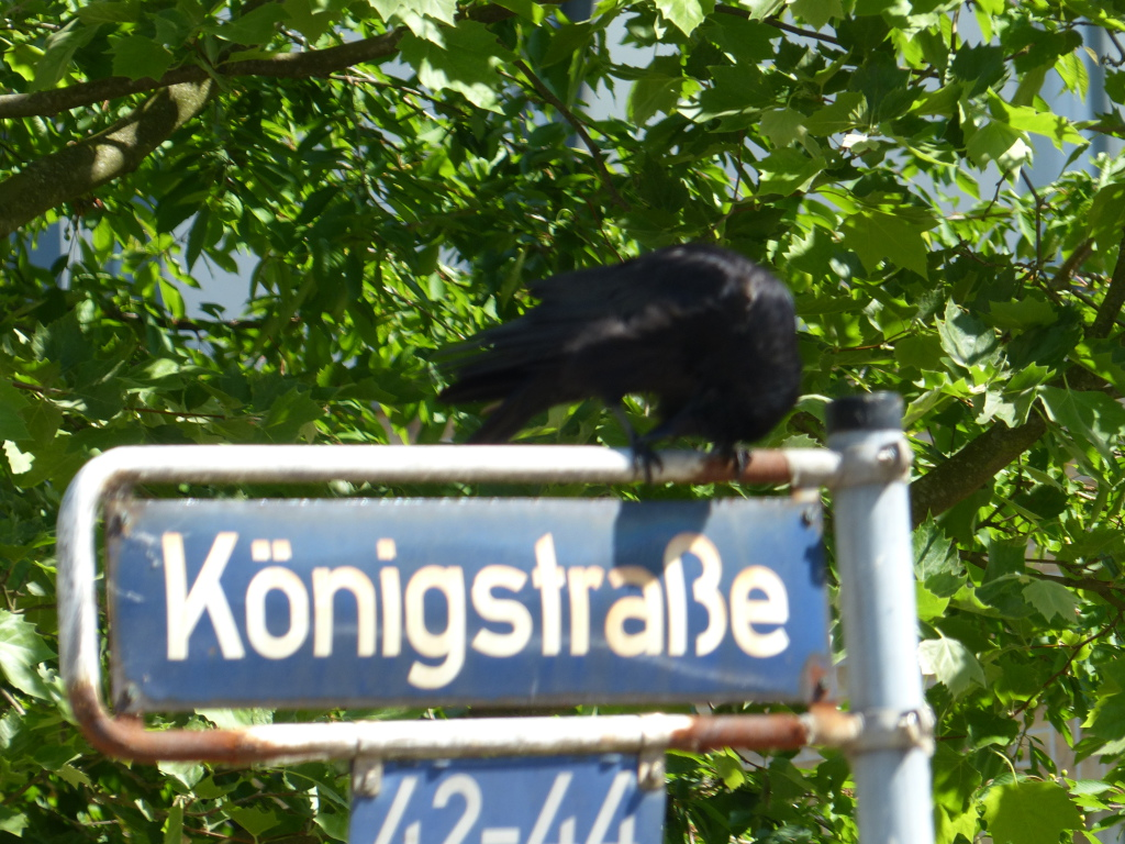 P1050070Königstrasse